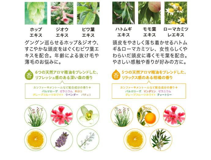 配合の植物エキス、精油