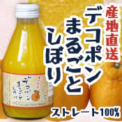 福田農場ワイナリー デコポンまるごとしぼりセット