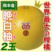 熊本八代産 晩白柚ばんぺいゆ2玉