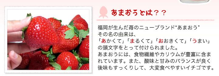 博多あまおうは、あかい、まるい、おおきい、うまいの頭文字と「甘い王様」をかけ合わせて「あまおう」と命名されました。あまおうには、食物繊維やカリウムが豊富に含まれています。また、酸味と甘みのバランスが良く後味もすっくりして、大変食べやすいイチゴです。