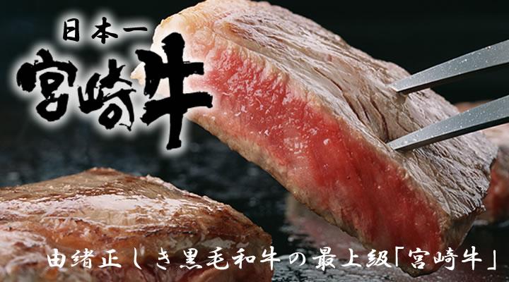 宮崎県まとめ - FC2まとめ