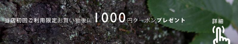 当店初回ご利用限定!お買い物後に1000円クーポンプレゼント