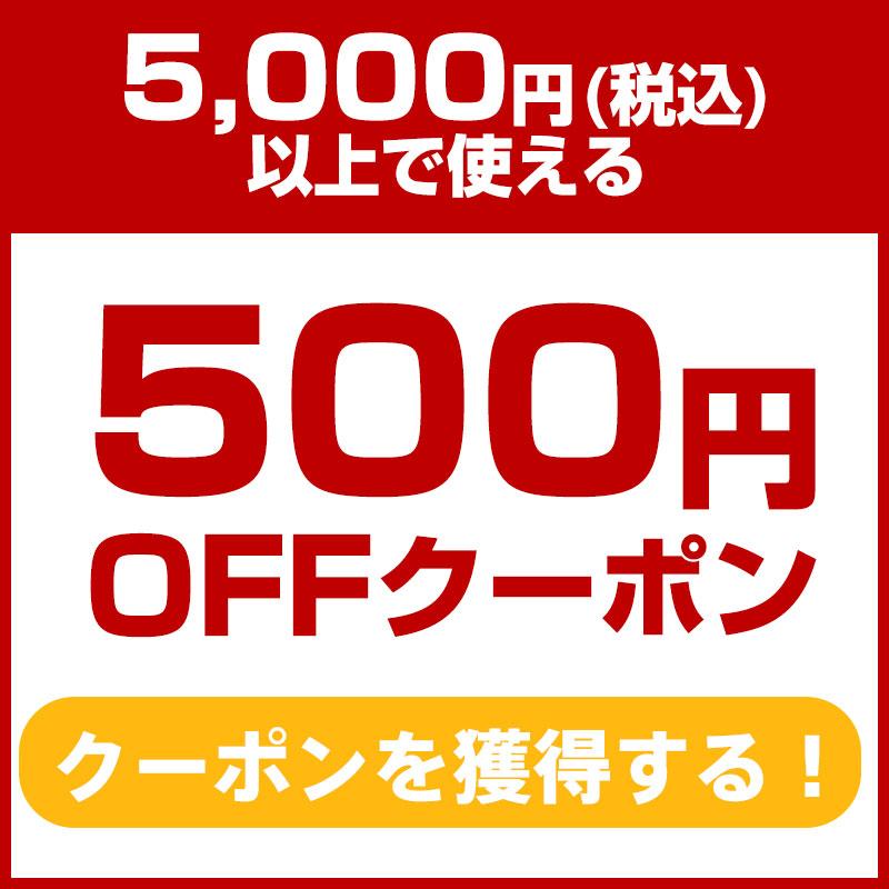 500円クーポンを獲得する