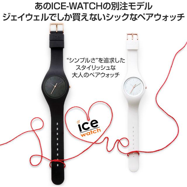 icefrbkus2-3_01.jpg