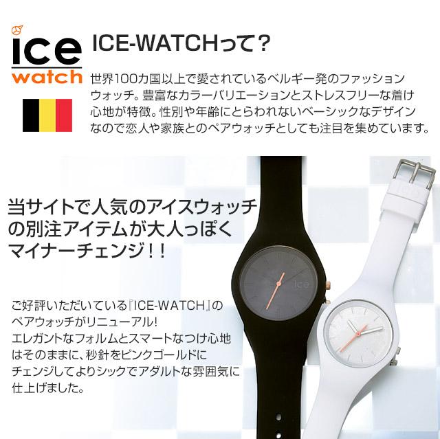 icefrbkus2-3_02.jpg