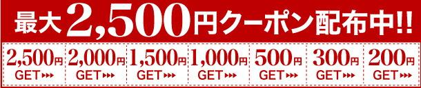 期間限定★最大2500円OFFクーポン★じょう美人商品対象