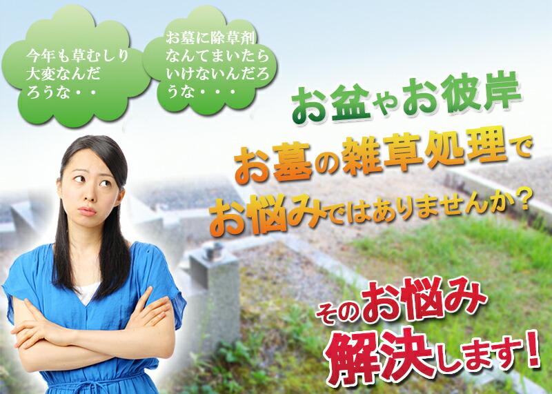 お盆やお彼岸、お墓の雑草処理にお悩みではありませんか。そのお悩み解決いたします。