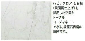 ハピアフロア トイレタフ 石目柄