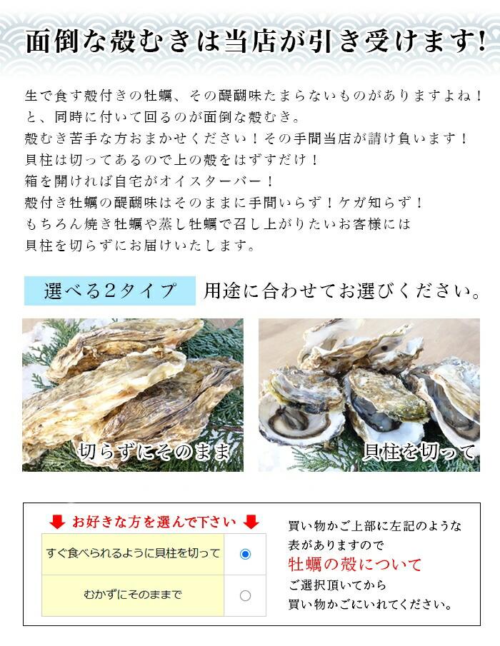 殻付き牡蠣30個
