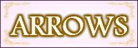 ARROWS ケース