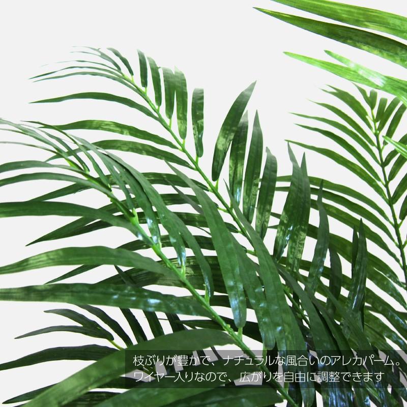 観葉植物 アレカパーム190cm