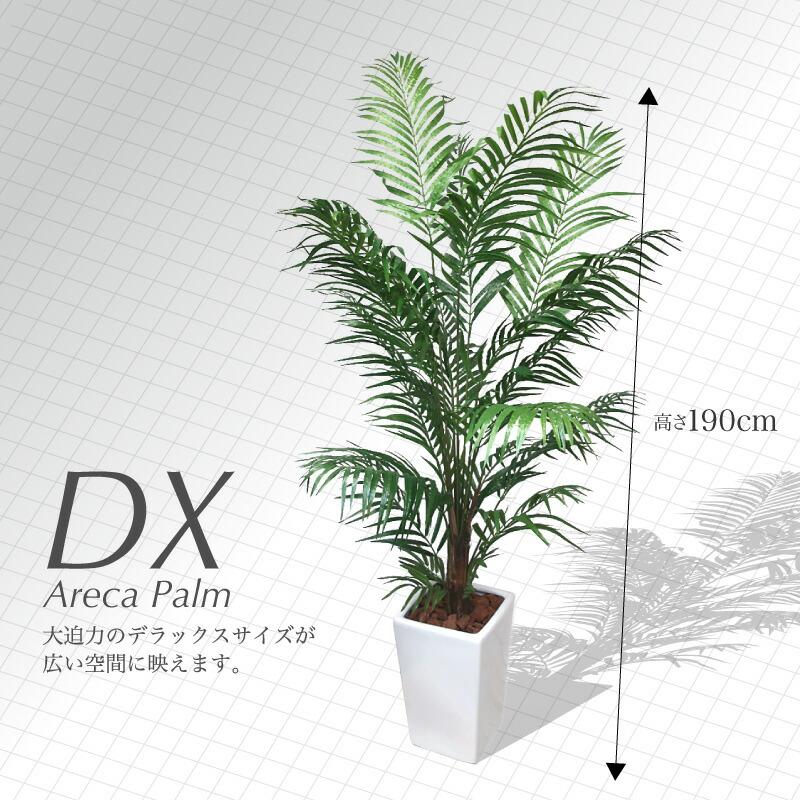 観葉植物アレカパーム190cm