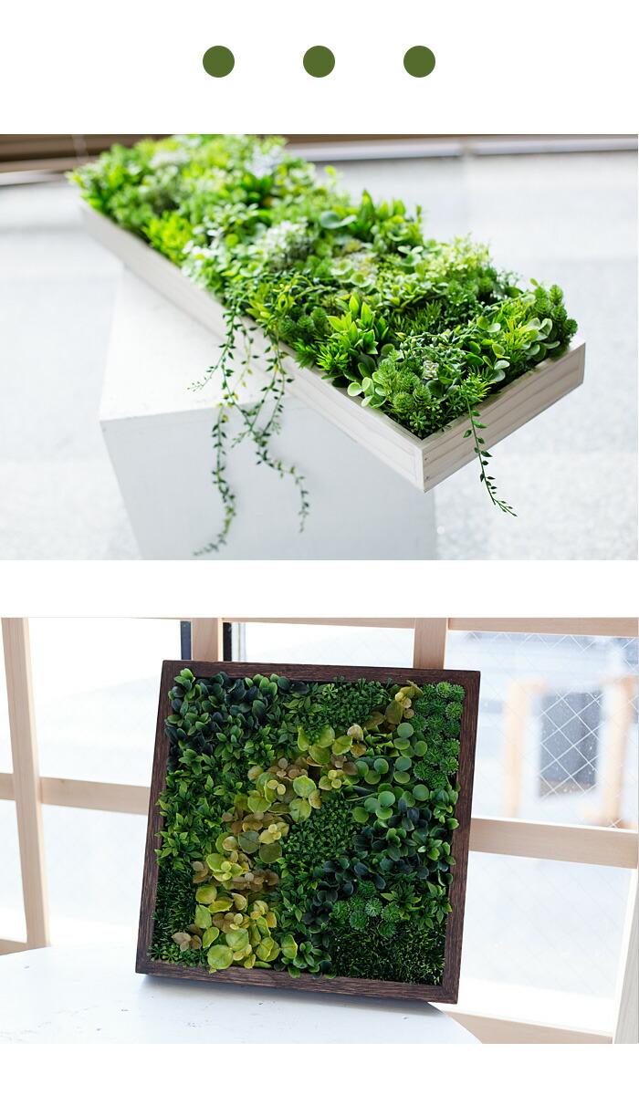 壁掛けグリーンサンプル5