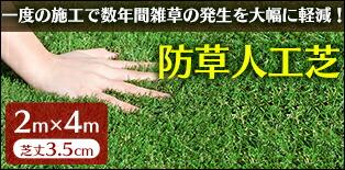 防草人工芝