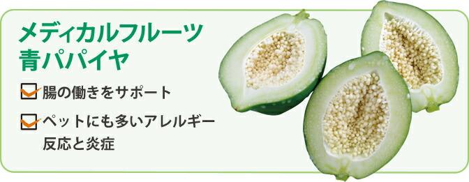 メディカルフルーツグリーンパパイヤ