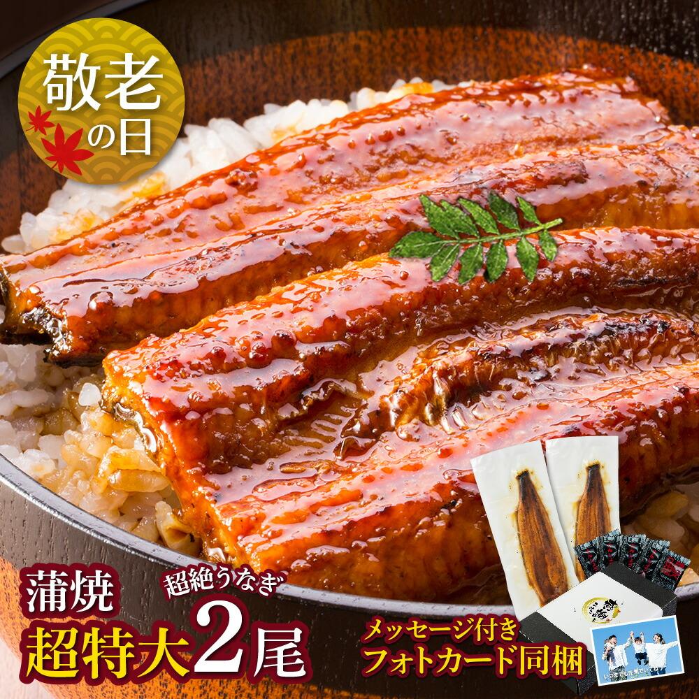 愛知三河産 超絶うなぎ蒲焼(269g-309g)×超特大2尾 5人前