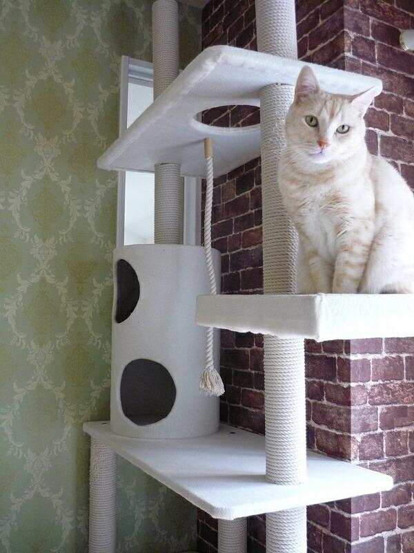 2011-1124-bedroom13.jpg