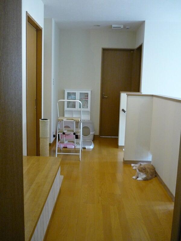 2011-1124-corridor01.jpg