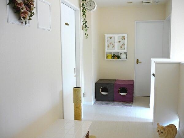 2011-1124-corridor04.jpg