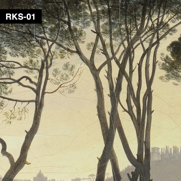 RKS-01 俯瞰