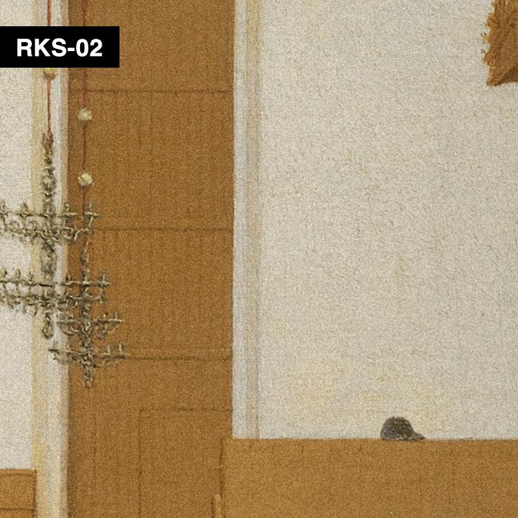 RKS-02 俯瞰