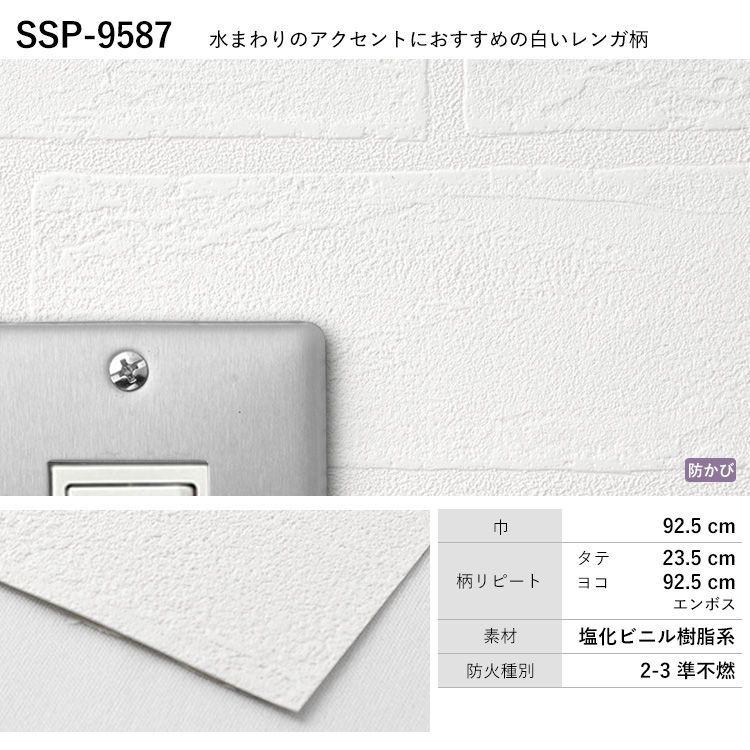 SSP-9587