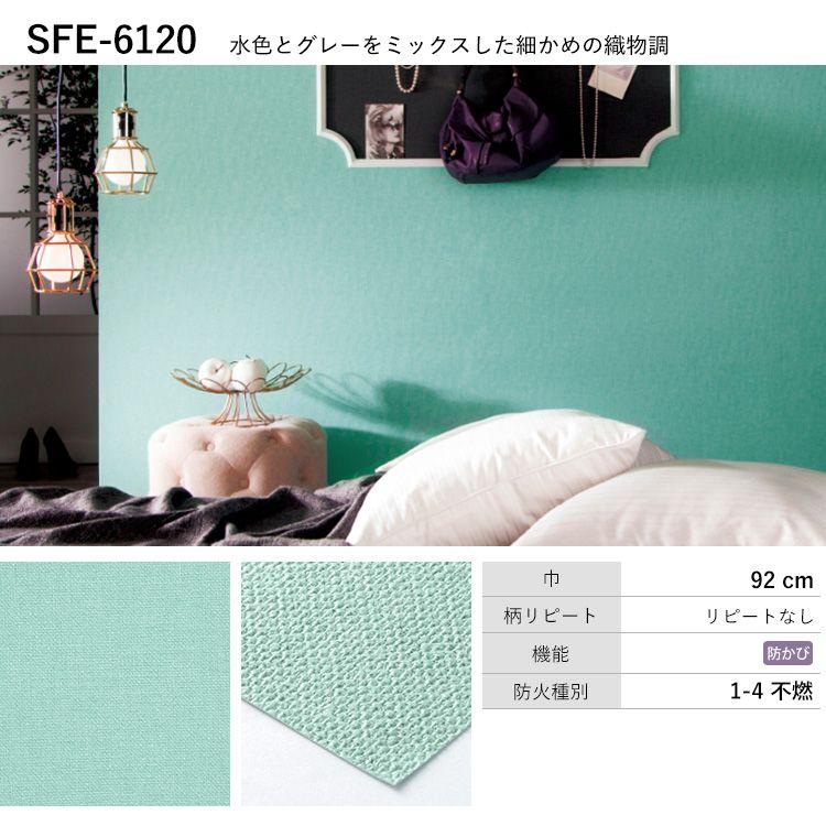 SFE-6120