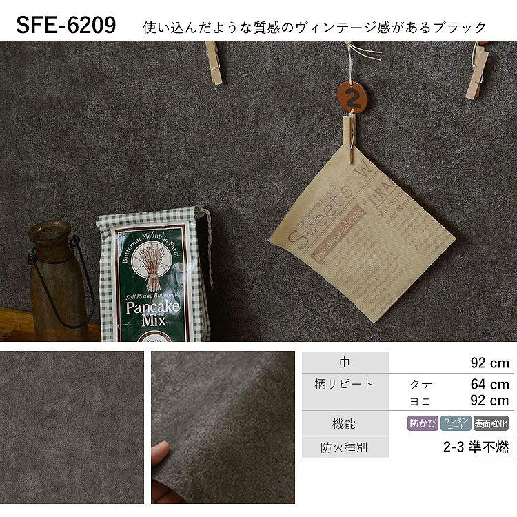 SFE-6209