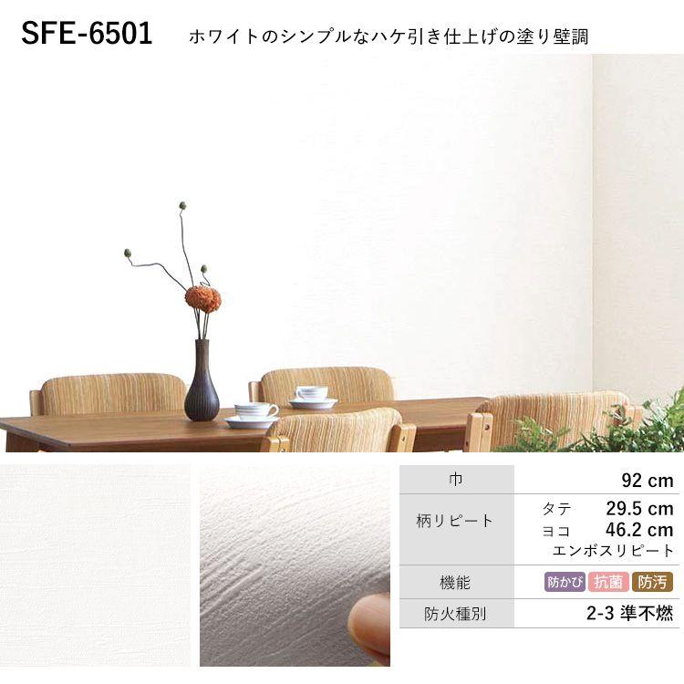 SFE-6501