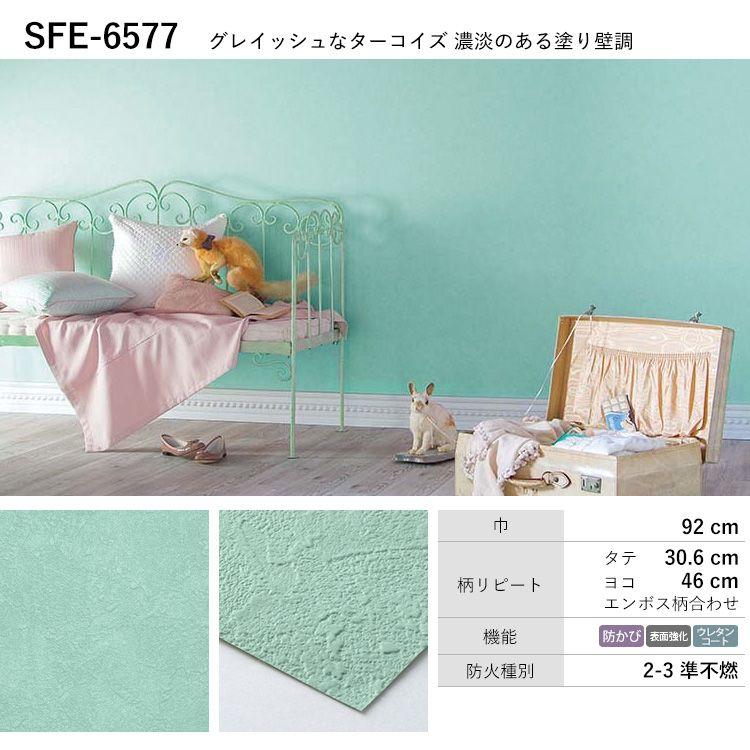 SFE-6577