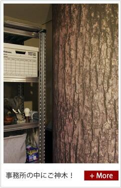 事務所をプチ改装、木の写真を壁紙に