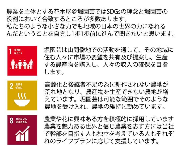 SDGsへの個別取組1