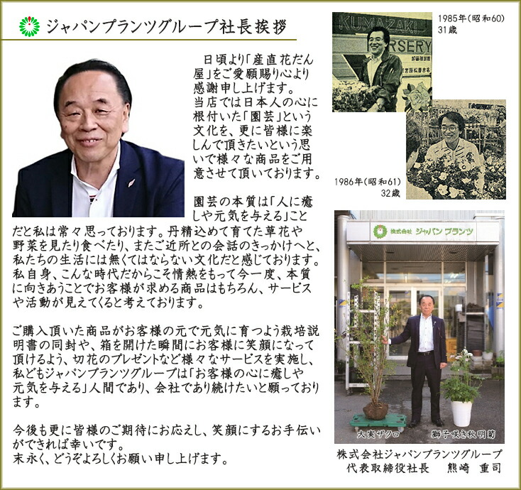 https://image.rakuten.co.jp/kadanya/cabinet/03232564/imgrc0076871440.jpg