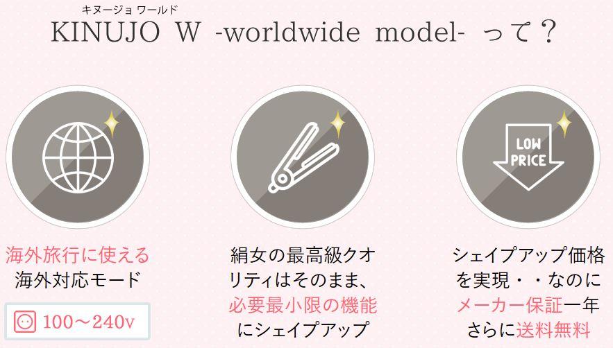 KINUJO W worldwide model DS100