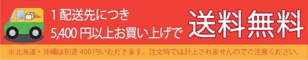 5,400円送料無料