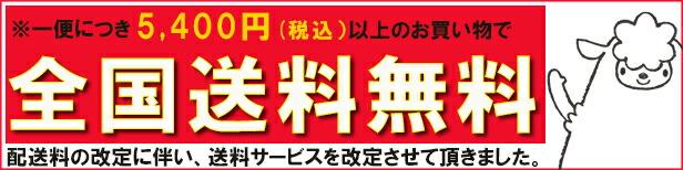 10,000円送料無料