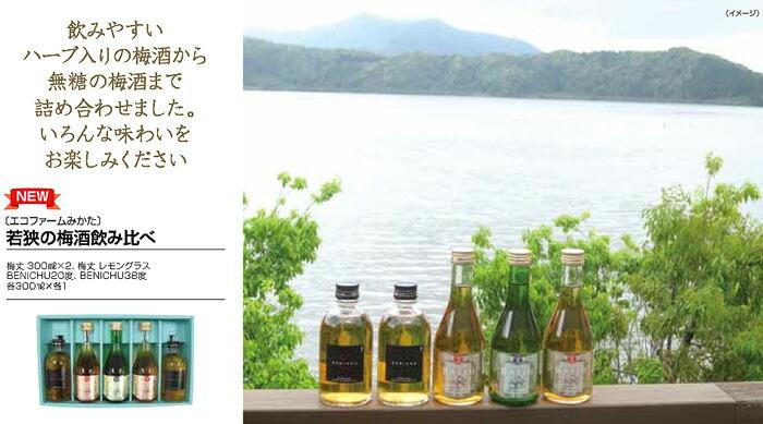 福井県の酒
