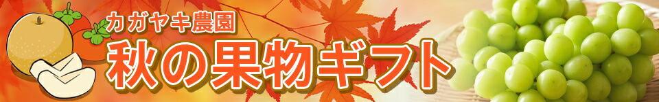秋の果物ギフト
