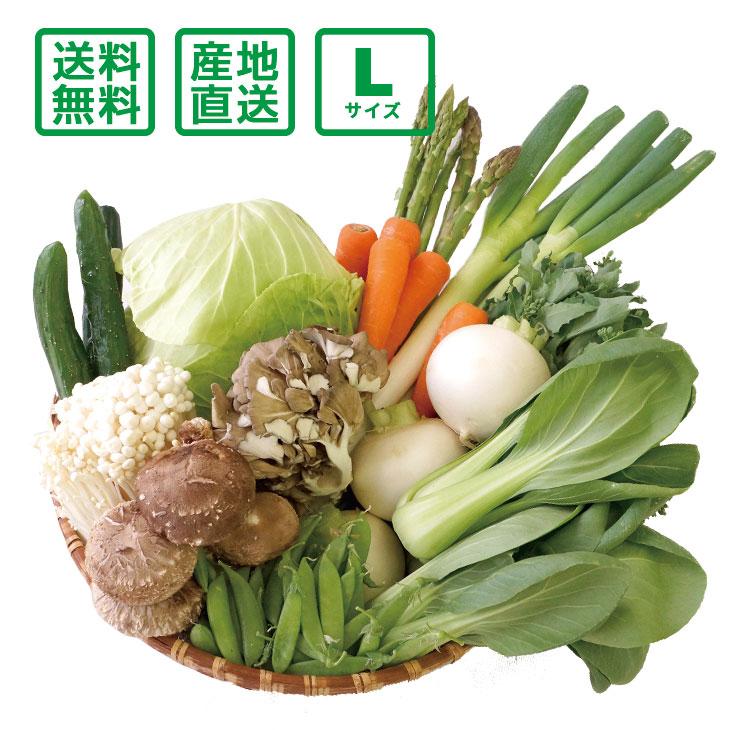 新潟の新鮮野菜詰め合わせ!野菜ボックスL