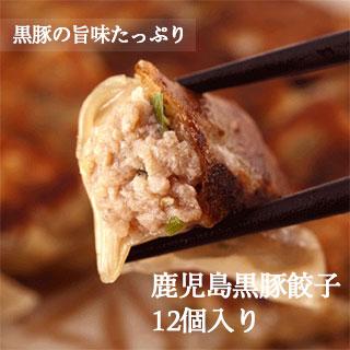 鹿児島黒豚 餃子