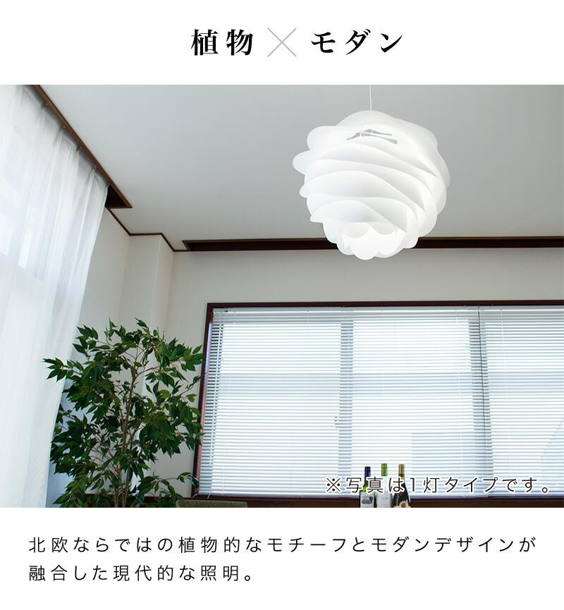 植物×モダン