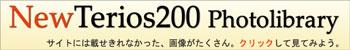 newteriosphoto350.jpg