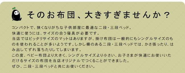 掛け布団_インビスタ社クォロフィル布団_ジュニアサイズ(カバー付き)_07