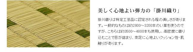 掛川織りのい草ラグ