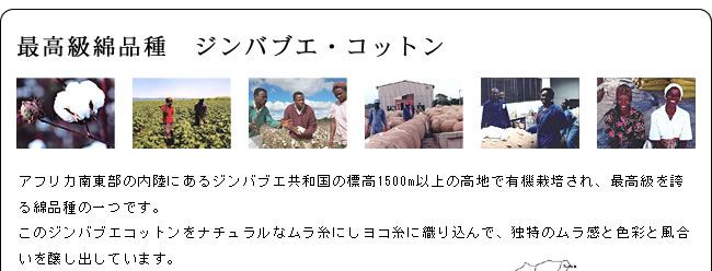 カバーリング_ジンバブエ・タック枕カバー43×63_06
