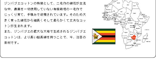 カバーリング_ジンバブエ・タック枕カバー43×63_07
