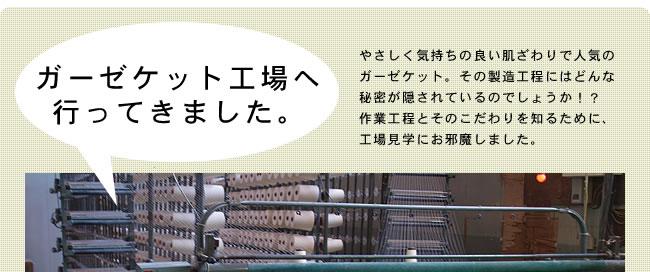 オーガニックコットン綿入りケット_シングル_15