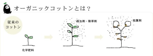 オーガニックコットン綿入りケット_シングル_07