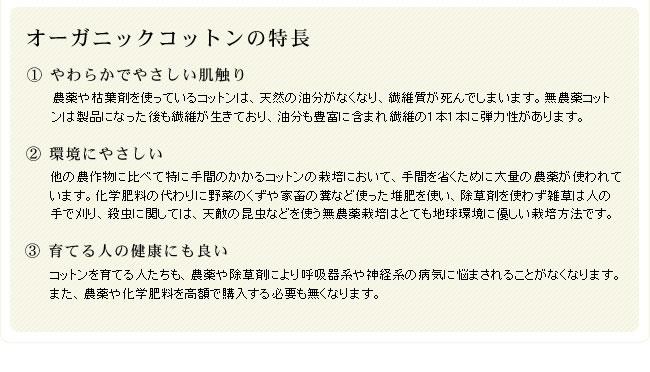オーガニックコットン綿入りケット_シングル_09