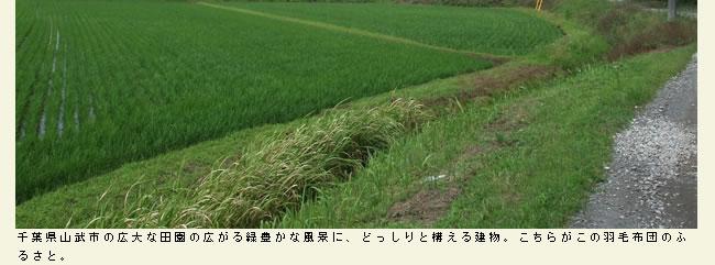 羽毛布団工場紹介_02